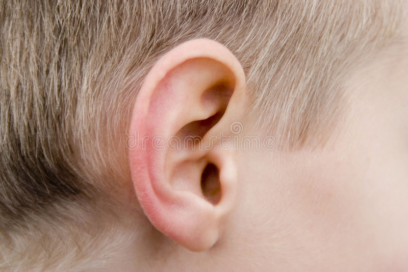 Oreille humaine images stock