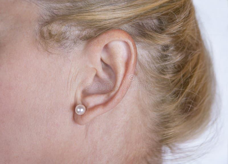 Oreille mûre de femme avec la boucle d'oreille et les cheveux blonds image libre de droits