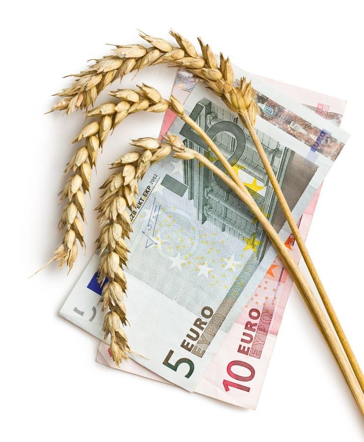 Oreilles de blé avec de l'euro argent images stock