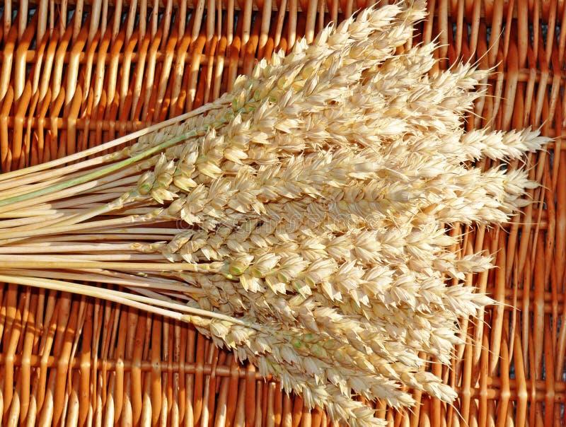 Oreilles de blé dans un panier photographie stock libre de droits