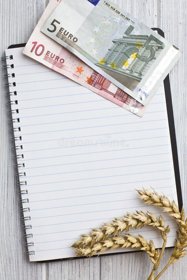 Oreilles de blé et euro argent sur le cahier images stock
