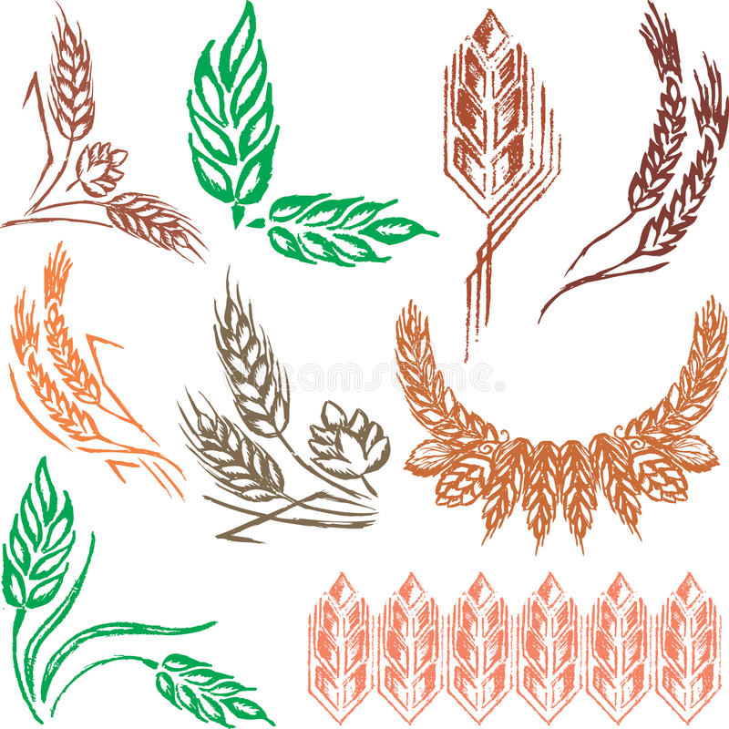 Oreilles de blé, gerbes et houblon en cônes créateurs illustration de vecteur