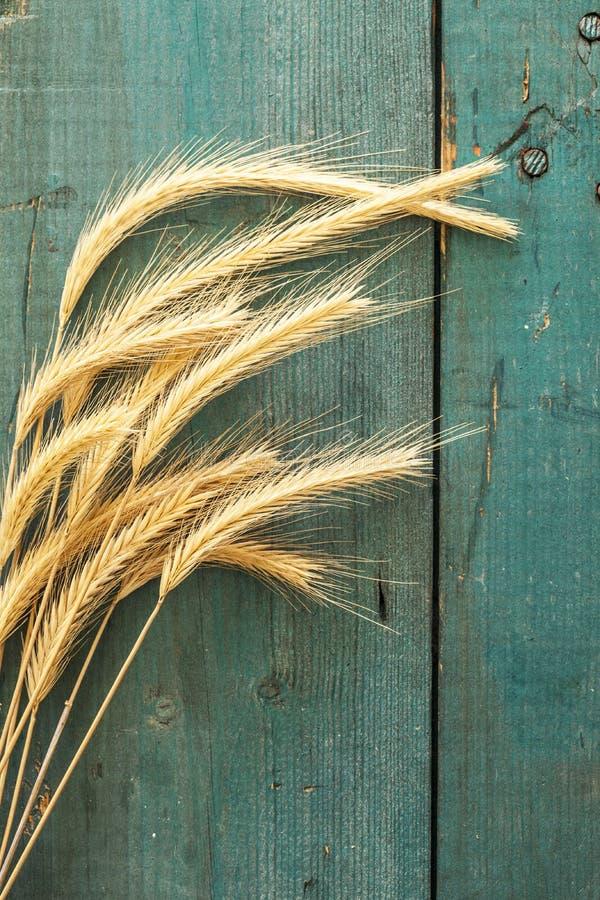 Download Oreilles De Blé Sur Le Fond En Bois Photo stock - Image du blé, moisson: 56480390