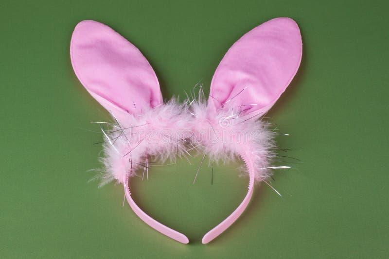 Oreilles de lapin photos libres de droits