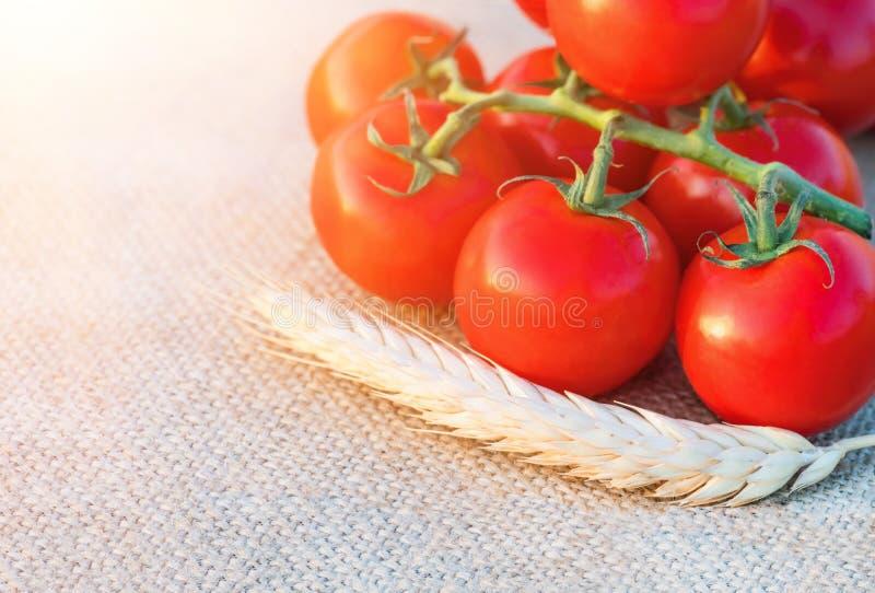 Orelha do trigo do close up e de tomates frescos, maduros fotos de stock