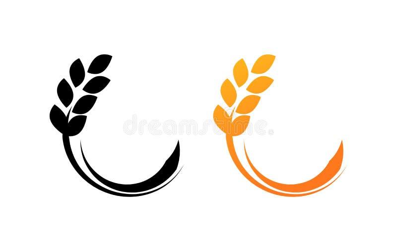 Orelhas da ilustração do vetor do trigo isolada no branco para o mercado de produtos agrícolas ilustração stock