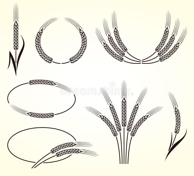 Orelhas do grupo do trigo e do centeio Vetor ilustração royalty free