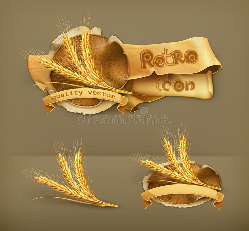 Orelhas do trigo, ícones do vetor ilustração stock