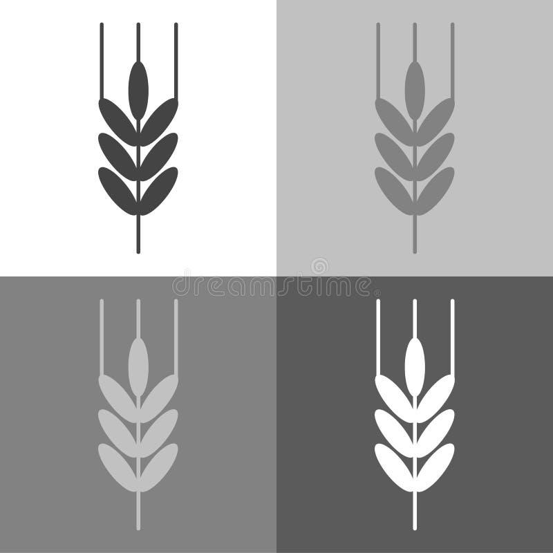 Orelhas do trigo, cereal Orelha da aveia Orelhas de Rye Ícone do vetor na cor branco-cinzento-preta ilustração stock