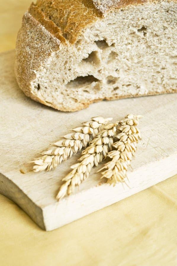 Orelhas do trigo e pão cozido fresco imagens de stock