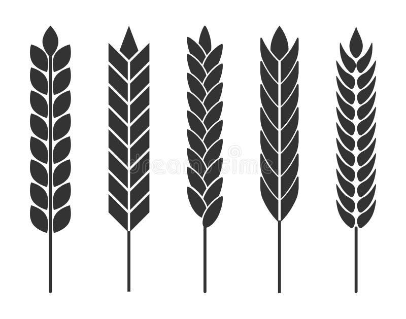 Orelhas do trigo Grupo de ícones do vetor para produtos agrícolas orgânicos ilustração stock