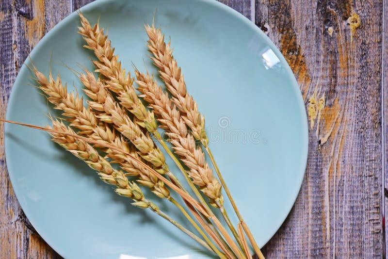 Orelhas maduras do trigo fotografia de stock