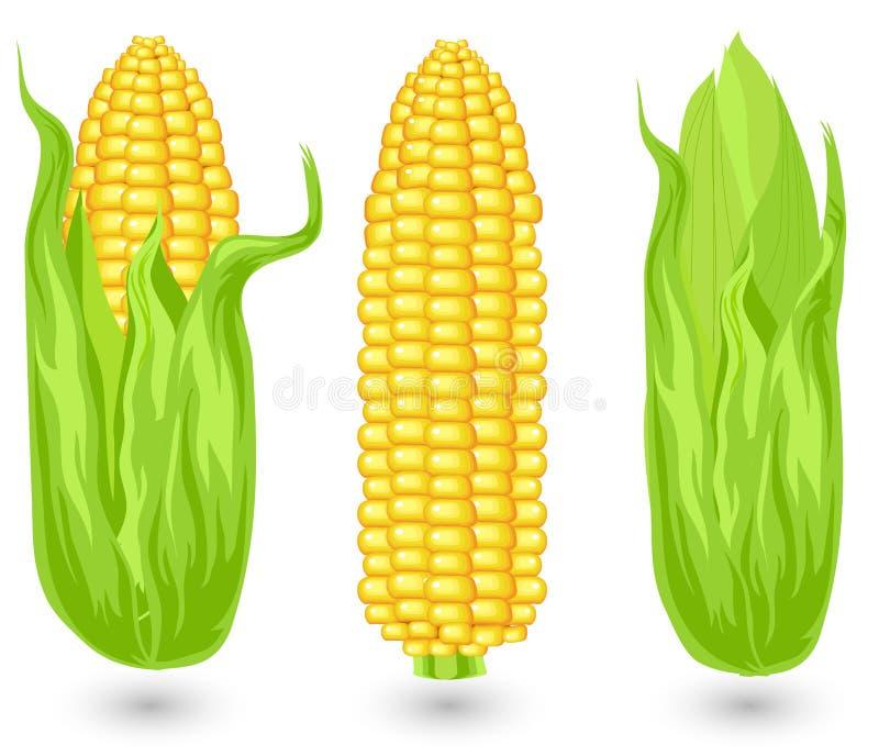 Oren van rijp graan vector illustratie
