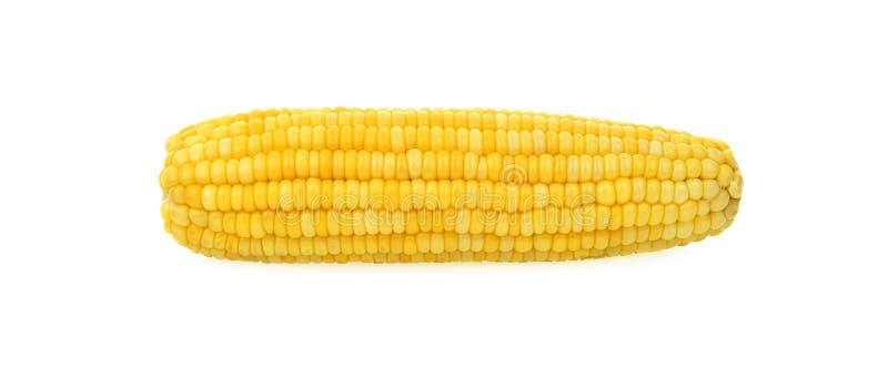 Oren van suikermaïs op witte achtergrond wordt geïsoleerd die stock afbeeldingen