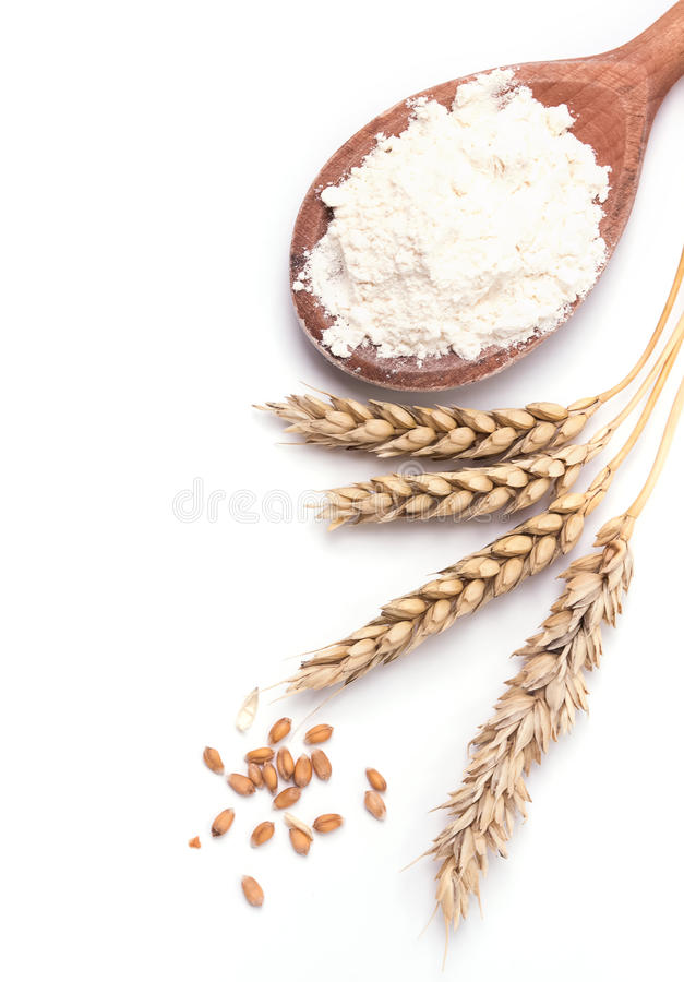 Oren van tarwe en bloem op de witte achtergrond stock afbeeldingen