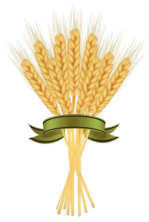 Oren van tarwe en linten op wit. vector illustratie