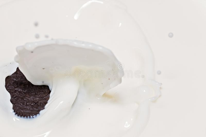 Oreo cookies in splash of milk stock photography