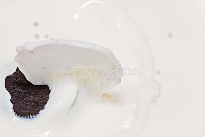 Oreo-Plätzchen im Spritzen von Milch stockfotografie