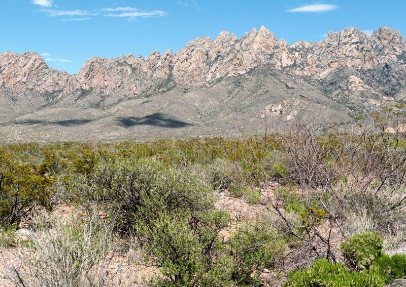 Orgaanbergen - het Nationale Monument van Woestijnpieken stock foto's