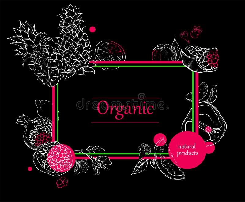 Orgalic tło z tropikalnych owoc sylwetką royalty ilustracja