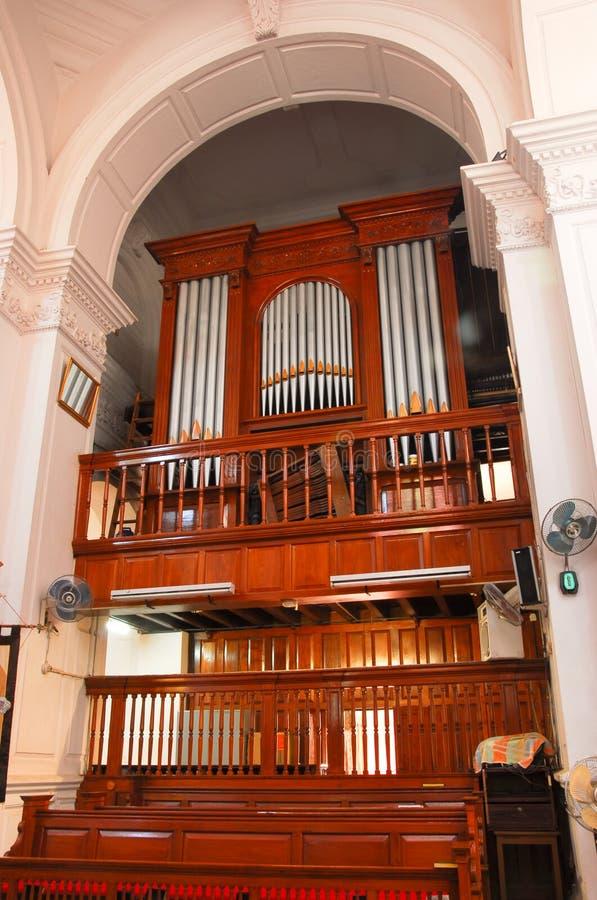 organ fotografia stock