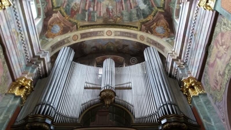 organ obraz royalty free