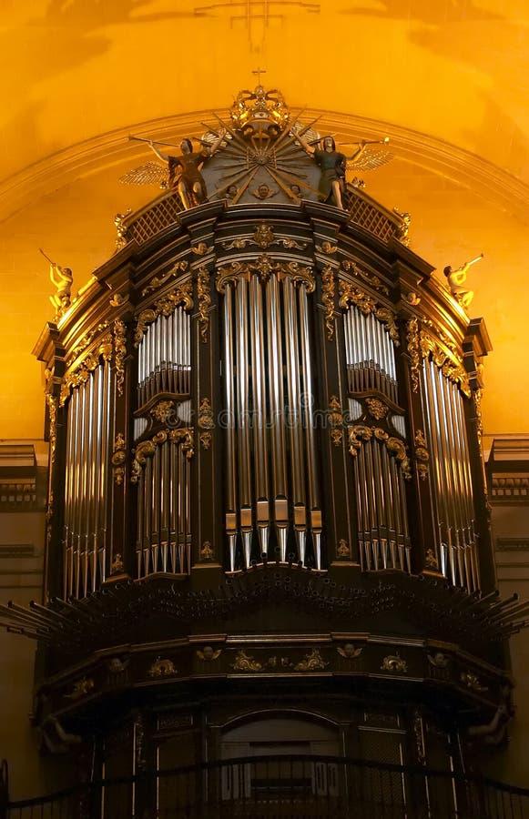 organ fotografia royalty free