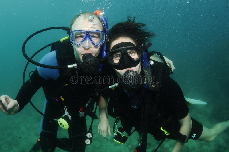Organ coral and scuba diver royalty free stock photography