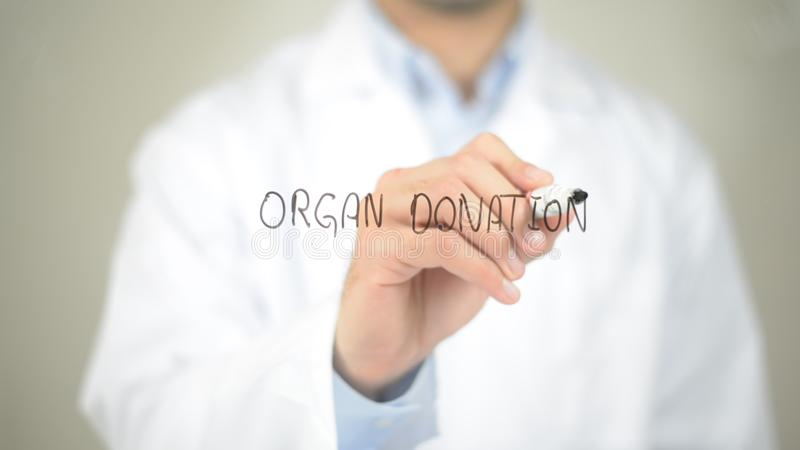 Organ Donation , Doctor writing on transparent screen. High quality stock photo