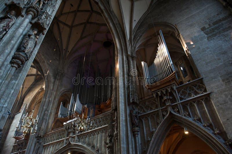 Organ på Stephansdom, Sts Stephen domkyrka i Wien Österrike royaltyfria bilder