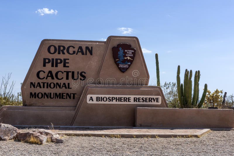 Organ Pipe Cactus National Monument. royalty free stock photo