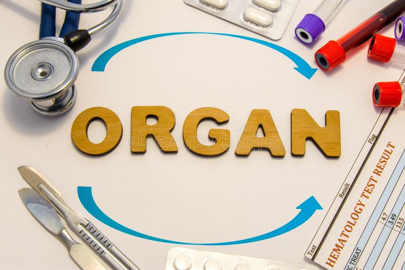 Organ transplantation concept photo. Word organ inlaid letters is surrounded by two arrows and medical supplies and equipment: ste. Thoscope, surgical scalpels stock photo