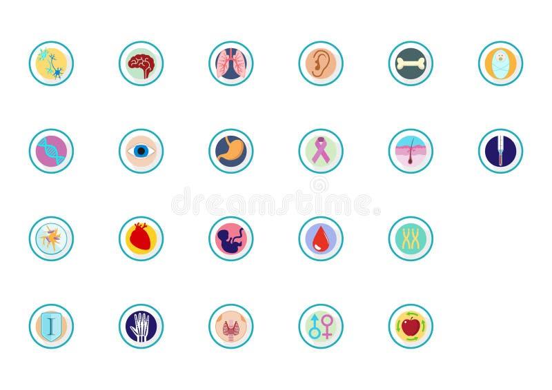 Organen en lichaamspictogrammen en infographics stock illustratie