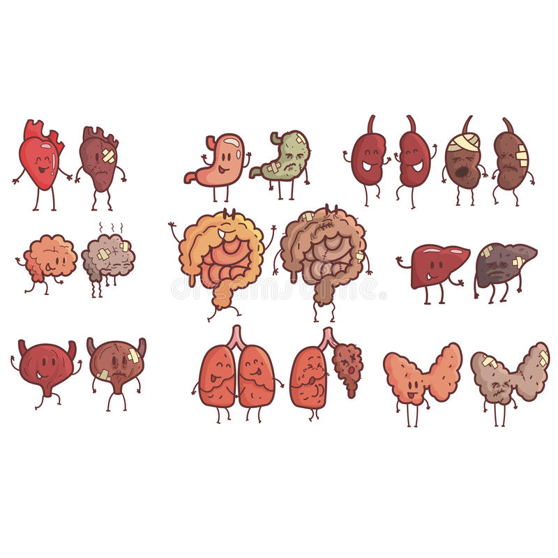 Organes internes humains sains contre l'ensemble malsain de paires décrites drôles anatomiques médicales de caractère comique d'o illustration de vecteur