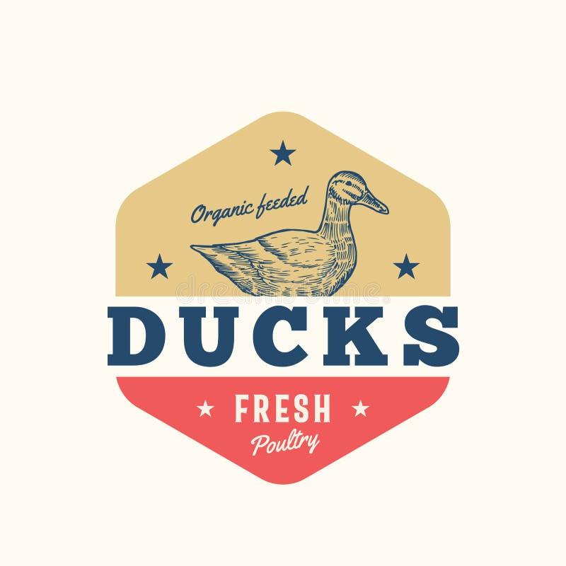 Organi Feeded penche le signe, le symbole ou le Logo Template frais de vecteur d'abrégé sur volaille Duck Sillhouette tiré par la illustration de vecteur