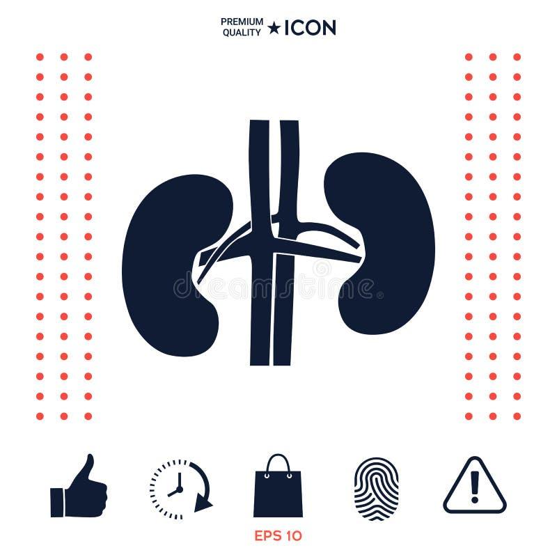 Download Organi Umani Icona Del Rene Illustrazione Vettoriale - Illustrazione di illustrazione, sano: 117975629
