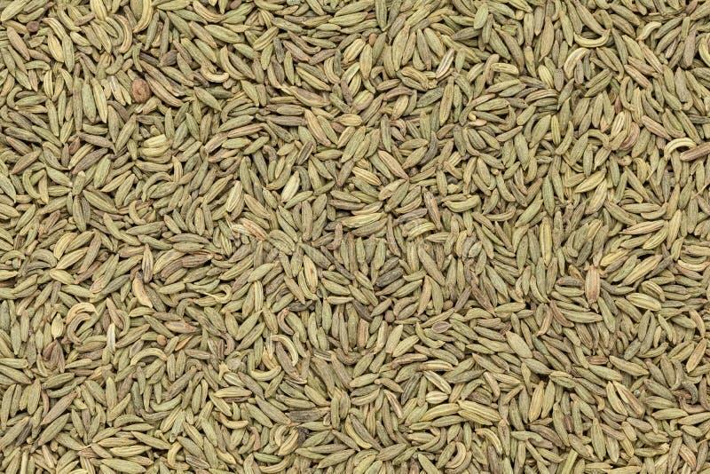 Organic Aniseed. Organic Aniseed (Pimpinella anisum) closeup background texture royalty free stock photos