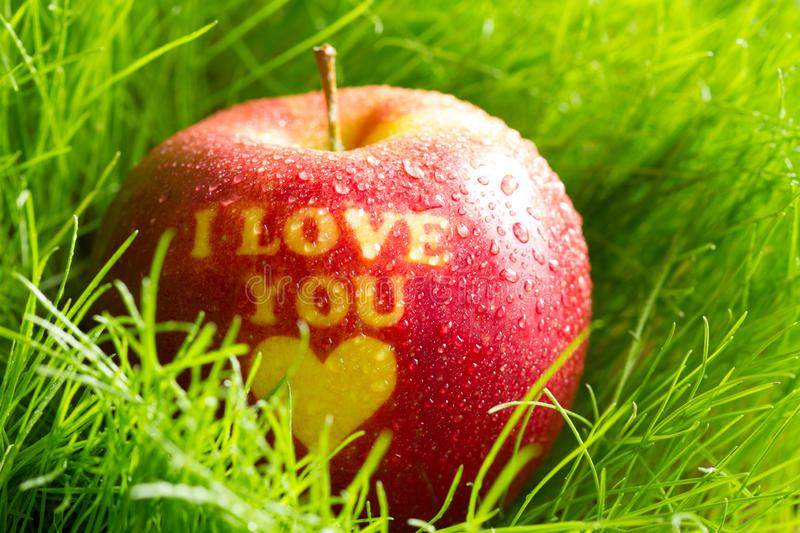 Organic apple in spring grass with inscription i love you healthy lifestyle concept. Abstract royalty free stock photography
