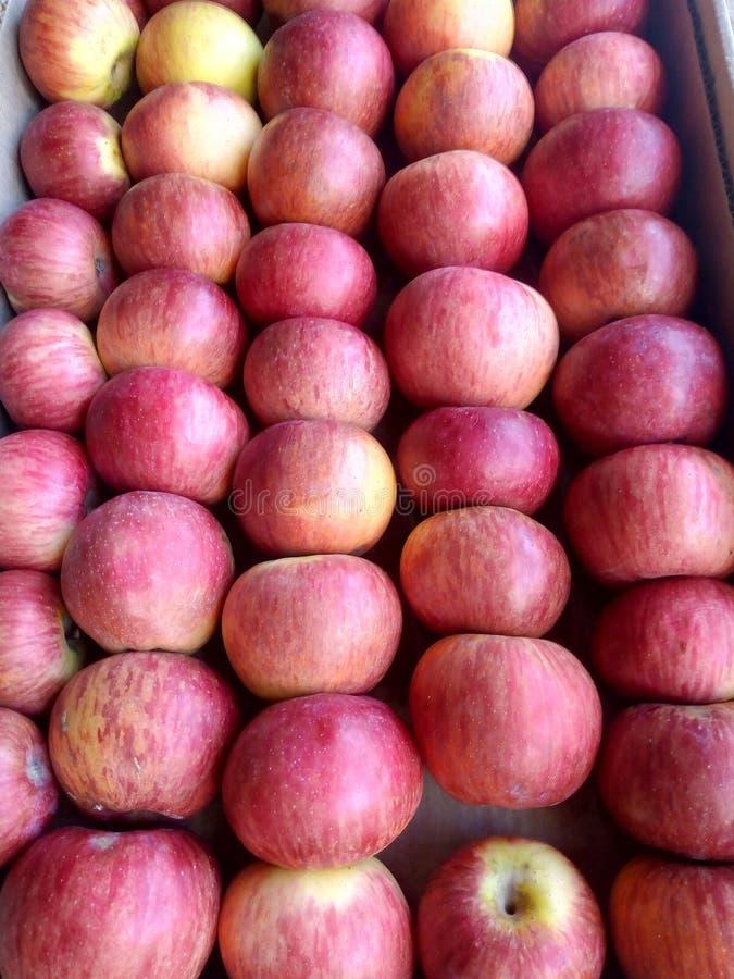 Close up view of fresh organic reddish apples arraged in fruit basket. Organic apples arranged in fruit basket royalty free stock photo