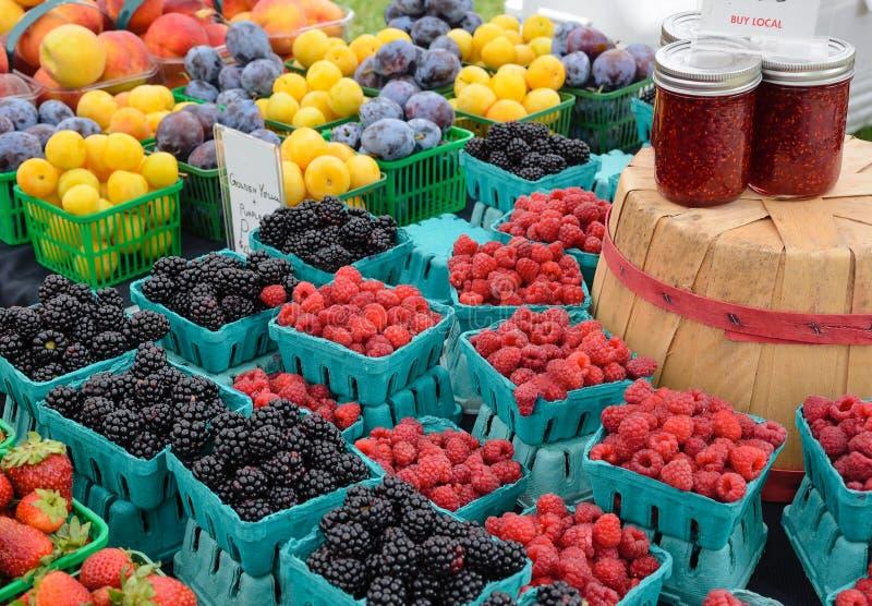 Organic Berries and Plums stock photos
