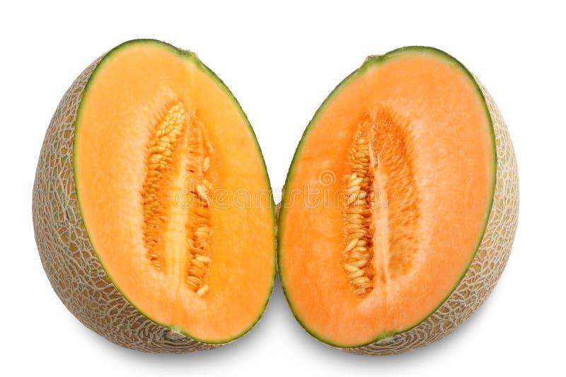 Organic Cantaloupe melon fruit isolated on white background.  royalty free stock images