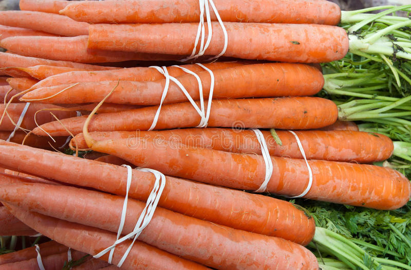Organic Carrots stock photography