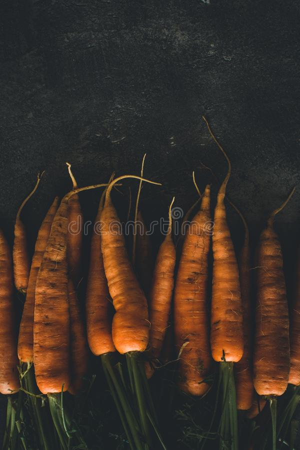 Organic Carrots on Dark Background. Healthy Eating Concept. Organic Carrots on Dark Background. Healthy Eating Concept and Diabetes Control stock image