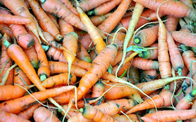 Organic Carrots In A Market Stock Photo