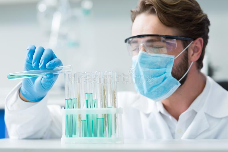 Selective focus of test tubes standing on the shelf stock photography