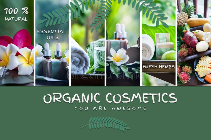 Organic cosmetics, natural fruit oils. Photo and illustration, cartoon style.  Concept spa, skin care,. Ecological and organic natural cosmetics royalty free stock image