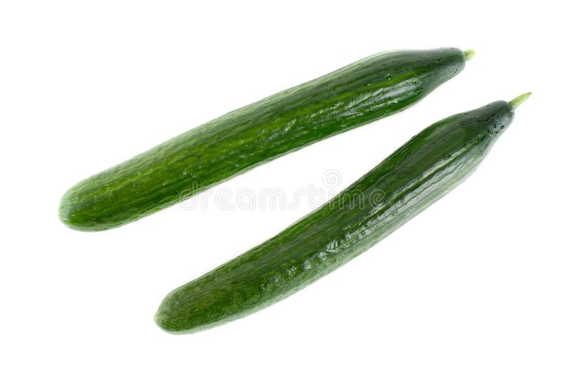 Organic Cucumbers On White Background royalty free stock images