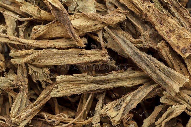 Organic dry hadjod (Cissus quadrangularis) stems. Macro close up background texture. Top view royalty free stock photography