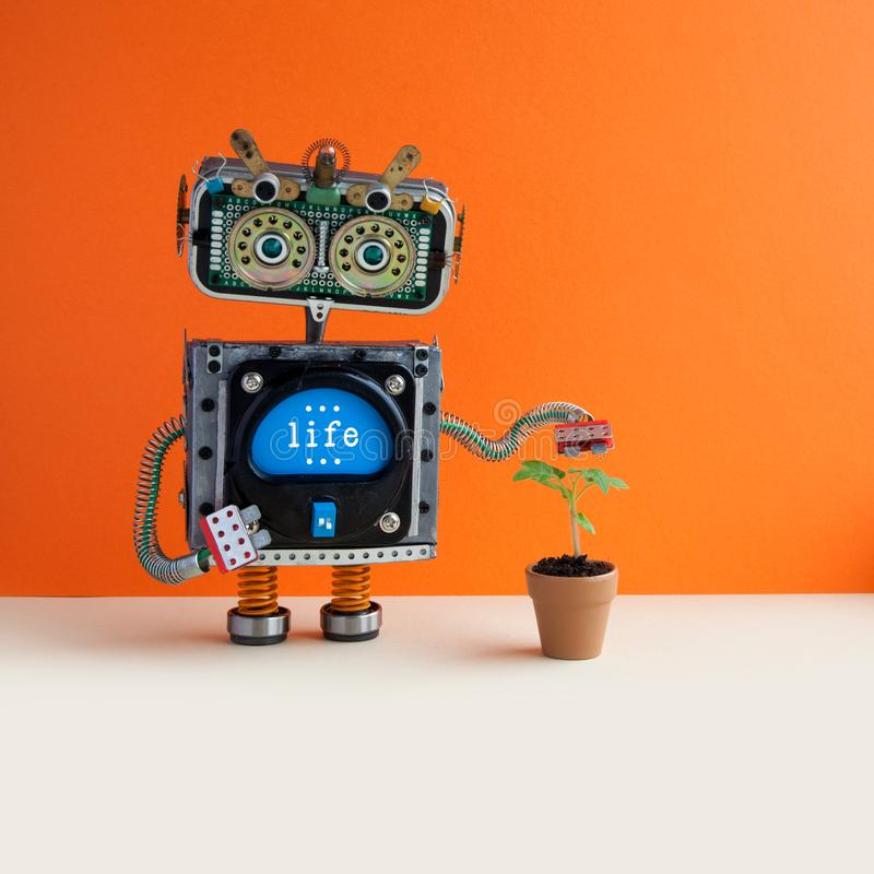 Organic eco life concept. Robot with a small green sprout plant in a clay flower pot. Orange wall background, copy space royalty free stock photography
