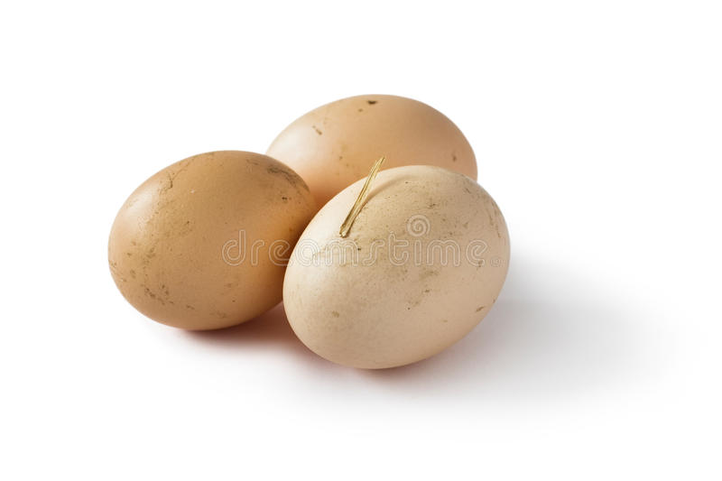 Organic eggs. On white background royalty free stock images